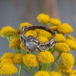 Серебряное кольцо с природным лабрадоритом
