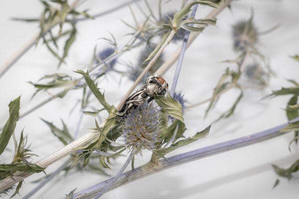 Серебряное кольцо с листиками и цветком