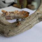 Необычное помолвочное кольцо