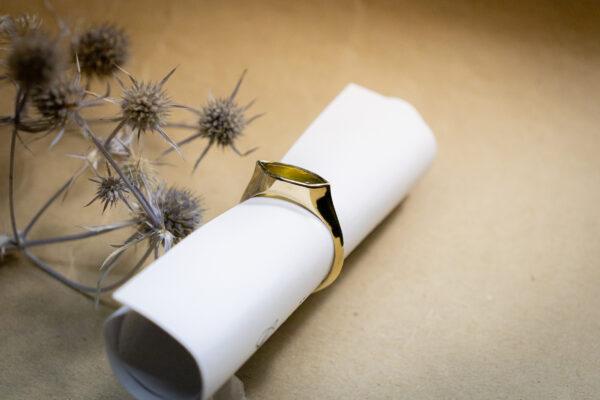 Мужское золотое кольцо с крупным камнем